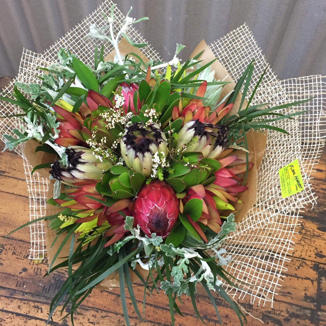 Beautiful Protea Bouquet