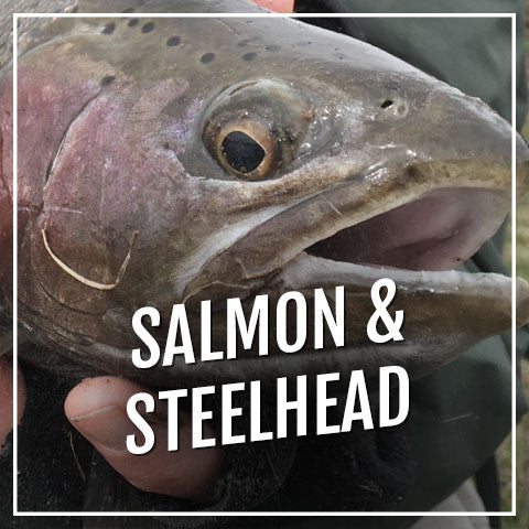 Salmon & Steelhead Blanks - fishmhx