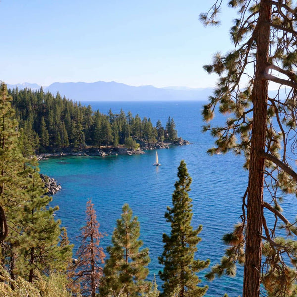 Your Ultimate Guide to Hiking and Camping in Tahoe National Forest