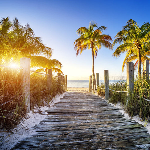 The 5 Best Camping Spots in The Florida Keys