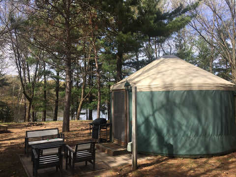 yurt in the shade of trees