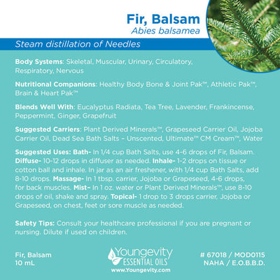 Fir, Balsam Essential Oil - 10ml