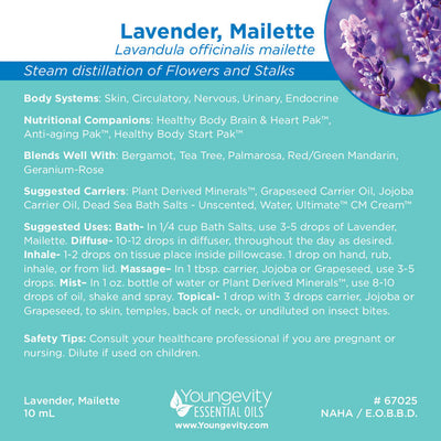 Lavender, Mailette Essential Oil - 10ml