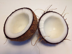 coconut oil skin care for dogs