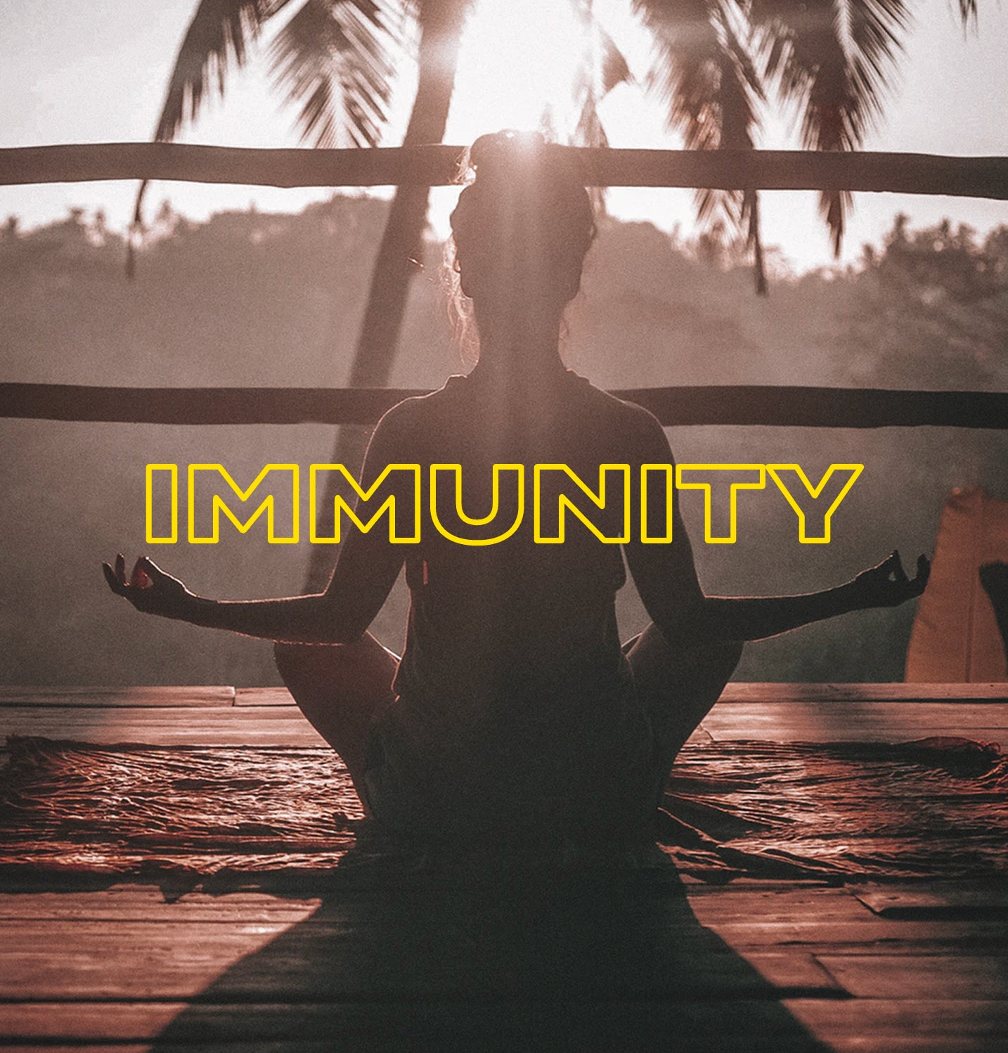 Let's Talk About Immunity