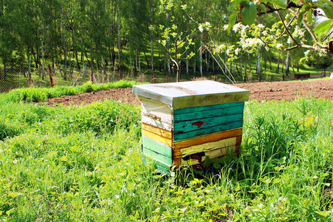 Rental bee hives available now. Servicing all of Victoria.