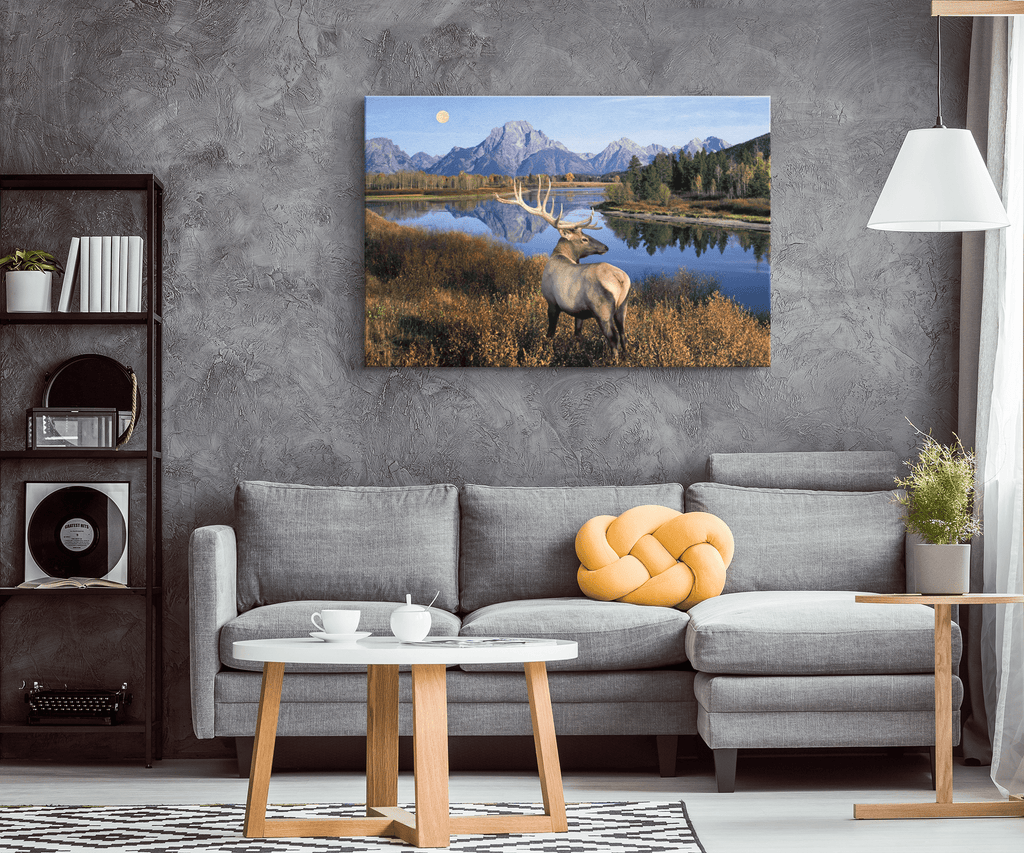 Bull Elk Wilderness Mountain Animals Nature Western Landscape Photo Print Canvas Wall Art Home & Hunting Lodge Decor