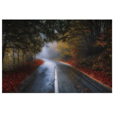 Autumn Road Trees Modern Contemporary Living Room Wall Art Canvas Print