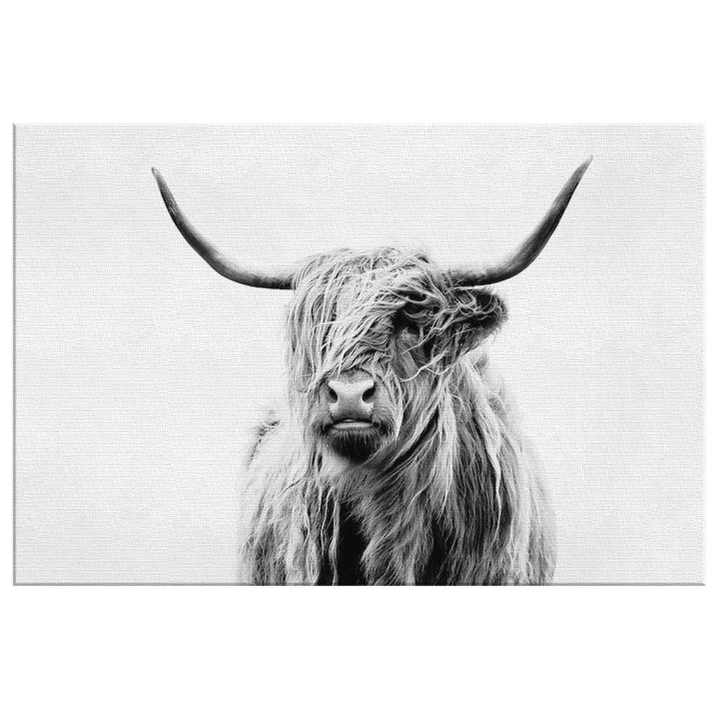 Highland Cow Portrait on Framed Canvas Photo Print | Black and White Wall Hanging Contemporary Modern Art Decor
