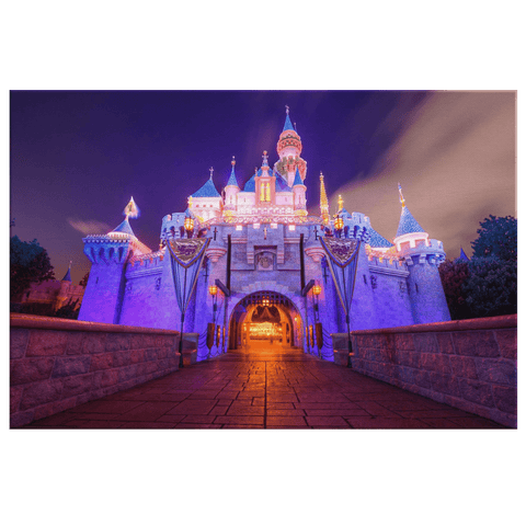 Disneyland Sleeping Beauty Castle Framed Canvas Photo Print