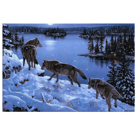 Wolf-Pack Walking through Snow at Night Framed Canvas Photo Print