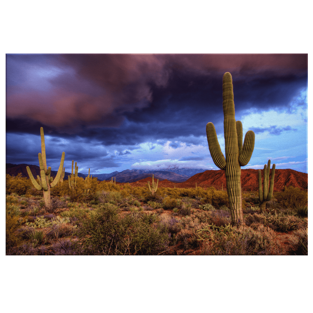 Arizona Desert Cactus Storm Sunset Framed Canvas Photo Print Nature Wall Art