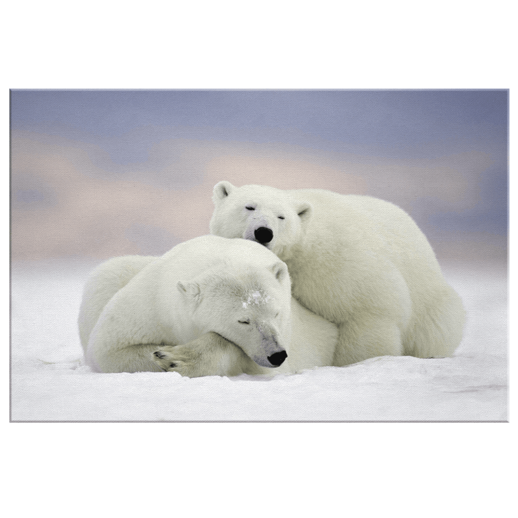 Cute Polar Bears Cuddling Photo Print on Framed Canvas Wall Art | Snow Nature Arctic Wildlife Photography Polar Bear Wall Art