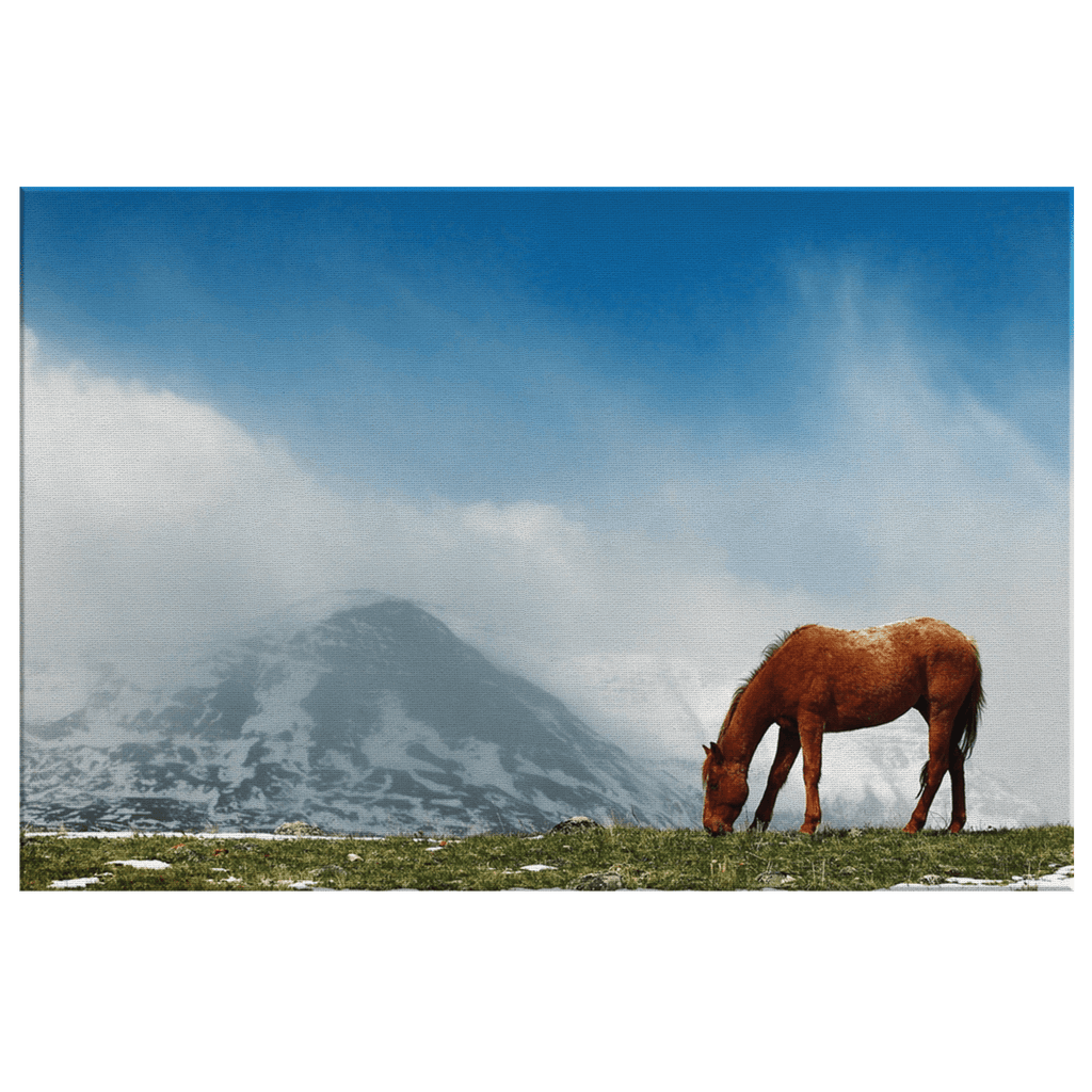 Wild Horse Snowy Mountain Peaks Photo Print Picture on Framed Canvas Wall Art | Horse photography Ranch Decor