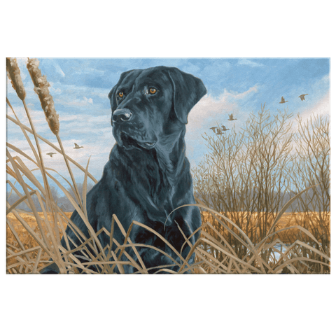 Black Lab Hunting Dog Vintage Painting on Framed Canvas Wall Art Print | Labrador Dog | Farmhouse Canvas Decor