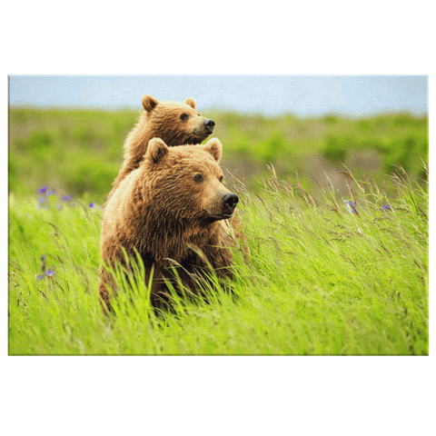Grizzly Bear Mom & Cub Cute Brown Bear in Grass Photo Print on Framed Canvas Wall Art | Wildlife Photography