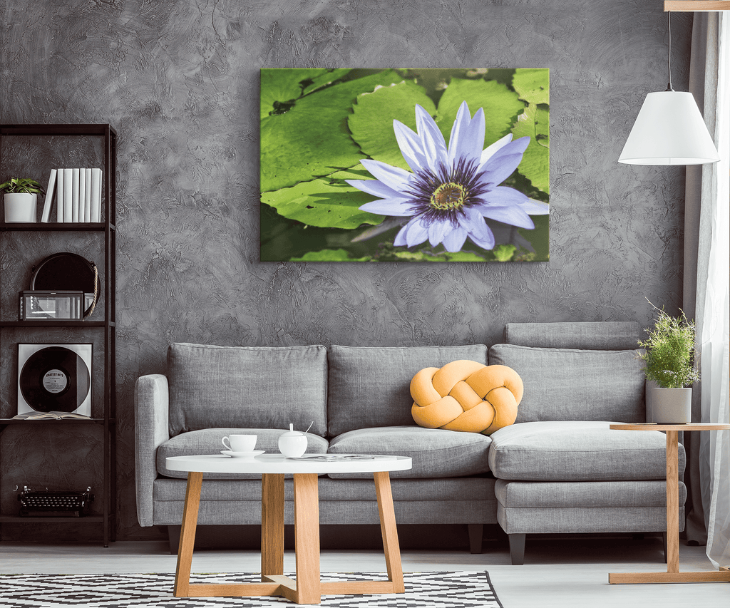 Purple Water Lily Flower Framed Canvas Photo Print