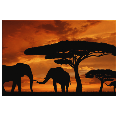 African Wild Elephants at Sunset Framed Canvas Photo Print