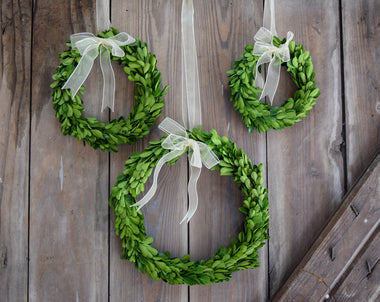 Preserved Boxwood Wreaths Round w/ Ribbon