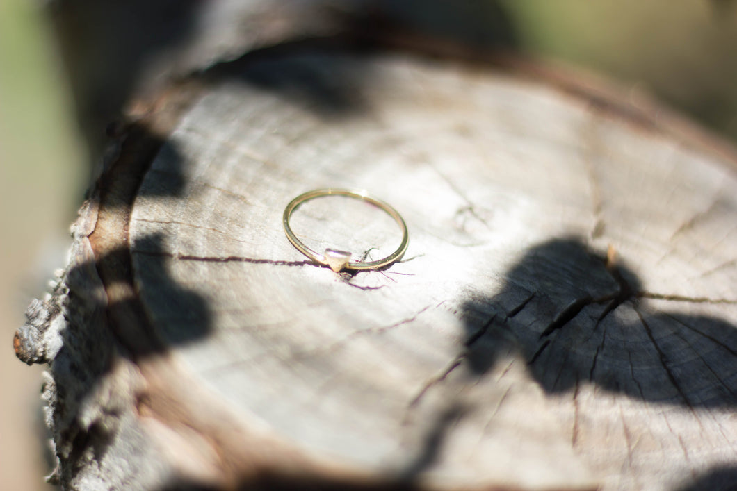 Resilient Ring