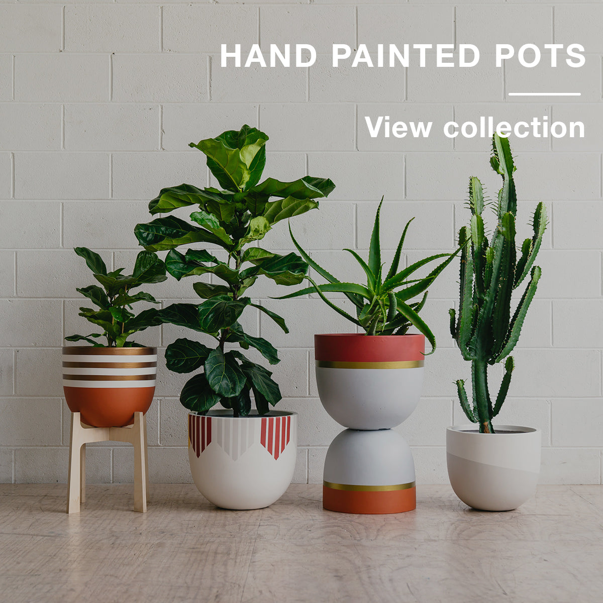 Toast and honey: Designer Pots, Prints and Plywood Online Melbourne