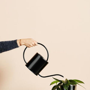 1.5L Watering Can by Ivy Muse - Toast and honey studio