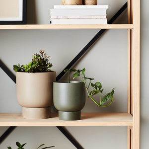Finch Pot Dusk by Evergreen Collective - Toast and honey studio