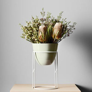 Halo Plant Stand by Ivy Muse - Toast and honey studio