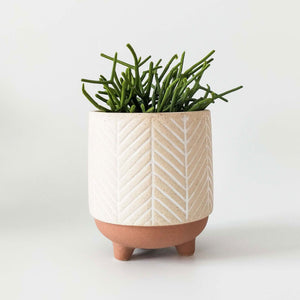 Kyra stripe planter with legs white/terracotta by Urban Products - Toast and honey studio