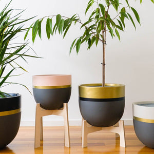 Medium Planter Stand - Natural by Toast & Honey Studio - Toast and honey studio