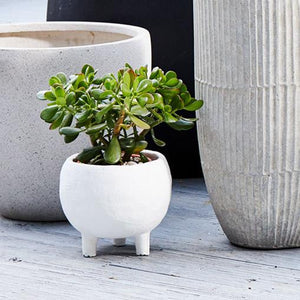Monte Planter White by Papaya - Toast and honey studio