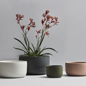 Planter Moss Green by Esko - Toast and honey studio