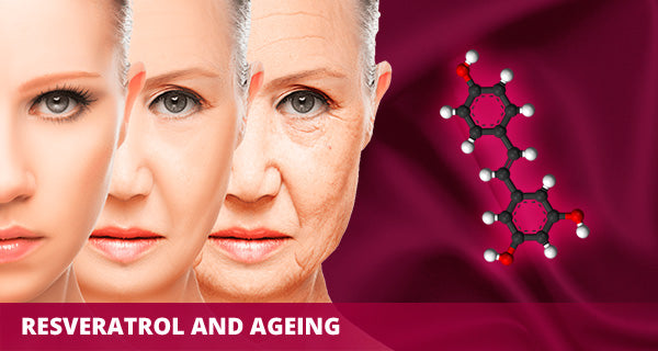 Resveratrol And Ageing Sanusq