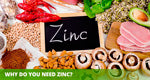 Why do you need Zinc?