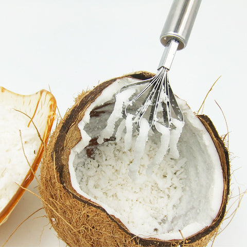 Coconut Shaver - Use as a Fish Scaler Too in Shredders/Presses