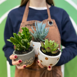 MINI CACTUS POTS (SET OF 3)