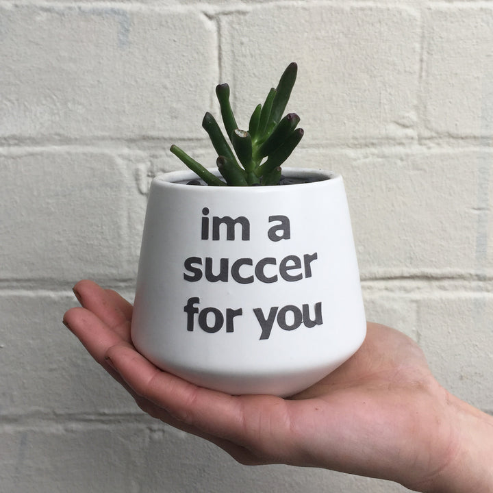 SUCCER FOR YOU PUN POT