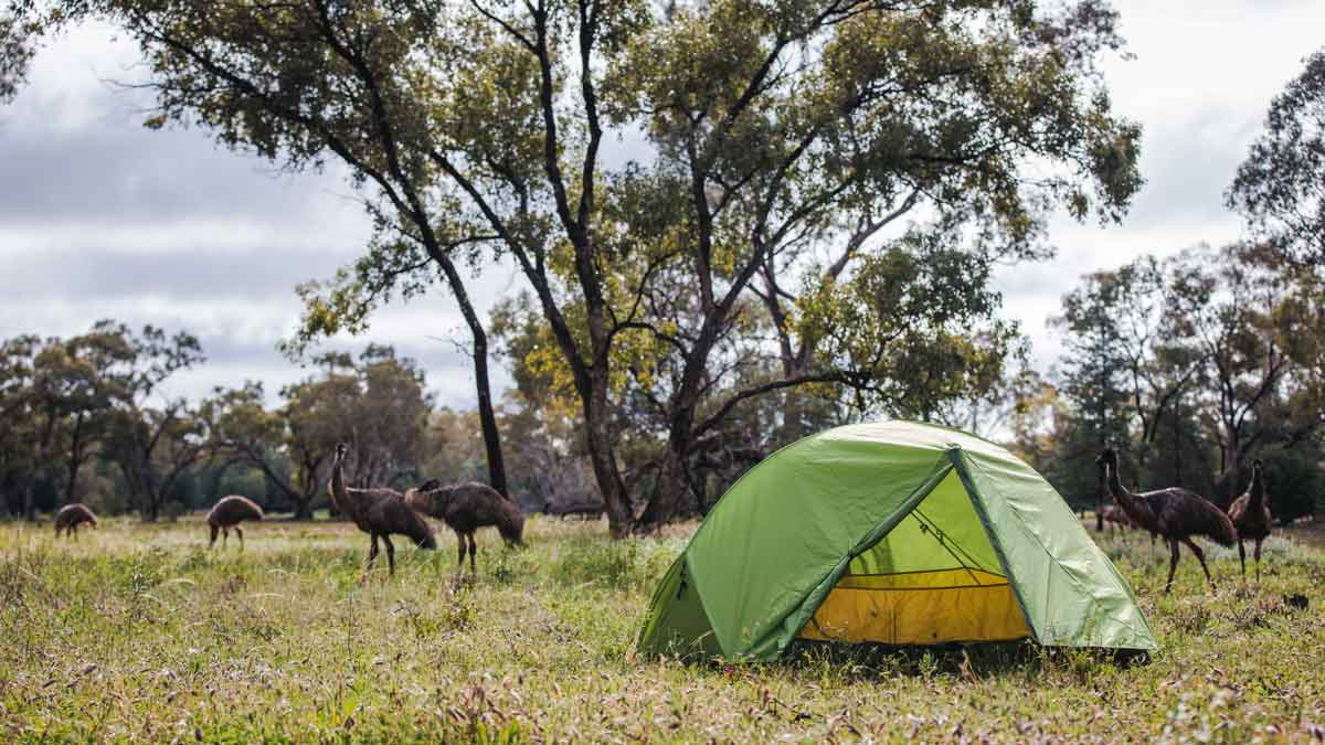 Lightweight camping shelter buyers guide tents 1