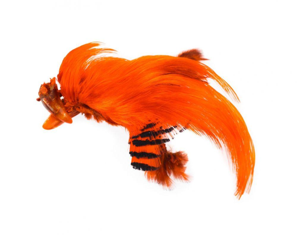 Hareline Dyed Golden Pheasant Crests Fly Fishing Materials Hareline Hot Orange