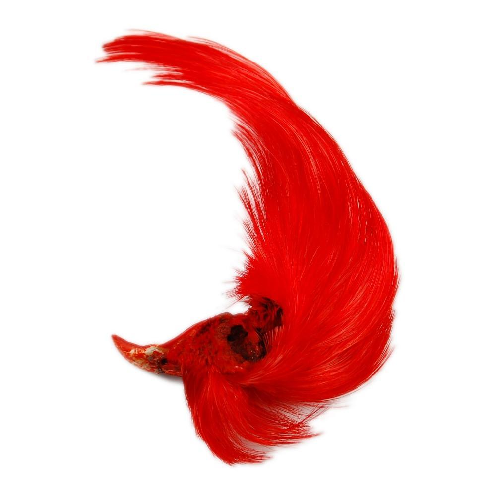 Hareline Dyed Golden Pheasant Crests Fly Fishing Materials Hareline Red