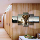 Male Brown African Elephant Wall Art Print Poster Decor Canvas