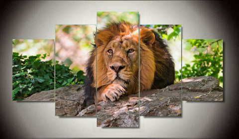 lion in tree wall art canvas