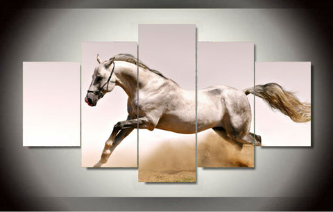 white arabian horse in desert wall art canvas