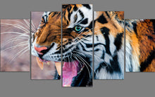 african tiger wall art canvas