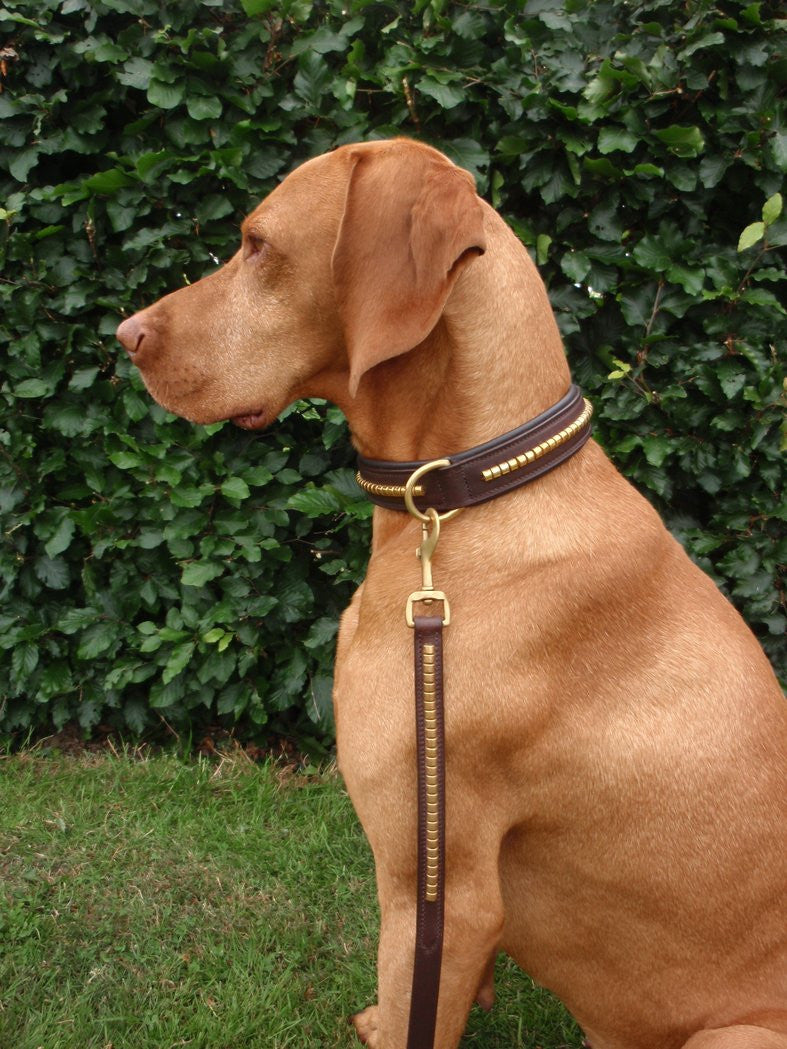 Dog Collar Leather Clincher