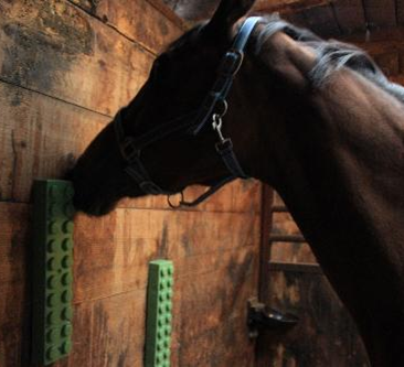 Elico Rubber Scratching Wall//Post Mat Equine Scratcher