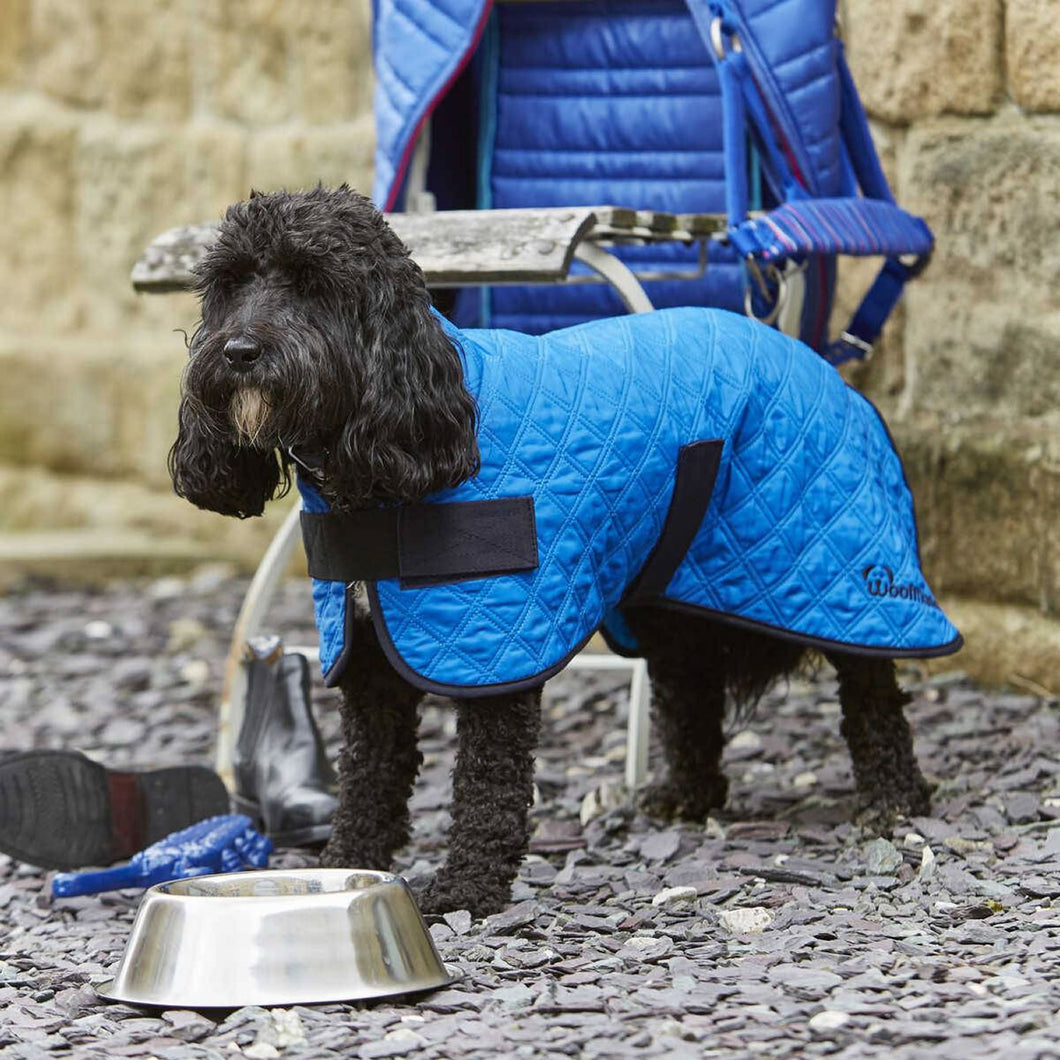 Woofmasta Dog Coat Cooling Blue