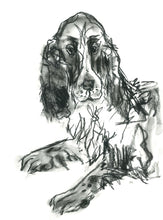 Load image into Gallery viewer, jarvis, spaniel - card & print
