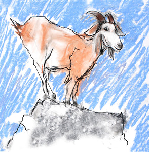 mountain goat - card & print