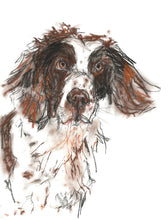 Load image into Gallery viewer, pogo, springer spaniel